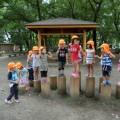 【たんぽぽ組】伊佐沼公園でロッククライミングに挑戦したよ!