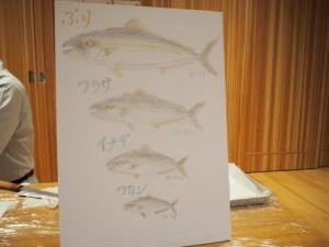 魚のさばきHP用_8729