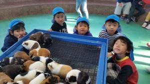 12月1日 智光山 動物園_200