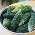 【食育】緑のカーテンの恵みを頂きました!