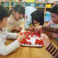 【食育】ぴかぴかトマトのへた取り当番♪