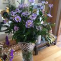 春のお花が届きました!
